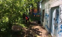 Культурный субботник добрался до усадьбы Лапино-Спасское (18.05.2019)