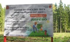 Акция «Создадим парки Победы по всей стране» в Можайске (01.10.2019)