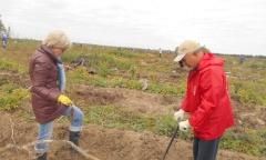 Можайские коммунисты «посадили свое дерево» (12.09.2015)