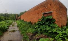 Под Коломной поселки утопают в вонючей жиже и борщевике (10.06.2021)