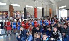 В Коломне прошел боксерский турнир на призы депутата Госдумы А.Ю. Русских (27.03.2016)
