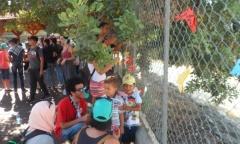 Пионерский слет в молодежном лагере на Кипре (11.07.2017)