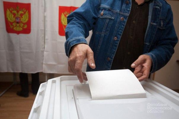 На выборах в Монино пресечена «карусель» с привлечением иногородних студентов