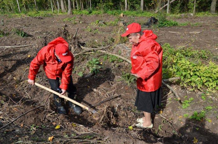 Коммунисты Зарайского района внесли лепту в восстановление леса