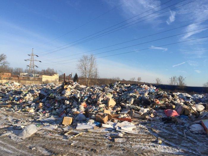 Власть неспособна работать, или кто виноват в мусорном коллапсе в Щёлково?