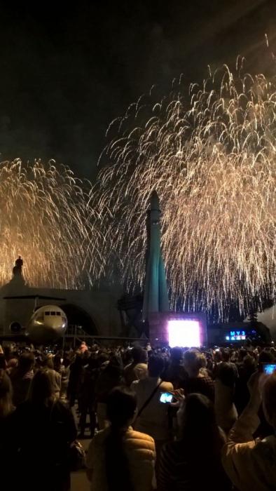 Пушкинские коммунисты прошли 9 мая 2016 года в колоннах Бессмертного полка
