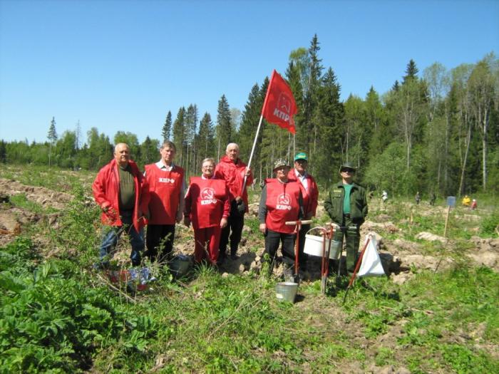 Акция по посадке леса в Можайском районе