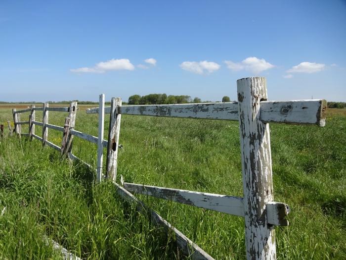Деструктивный передел территорий вместо роста надоев молока?