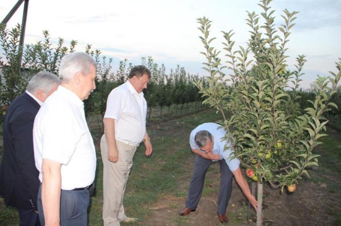 В.И. Кашин: Для нормального развития сельского хозяйства нужны надежные механизмы реализации произведенной продукции!