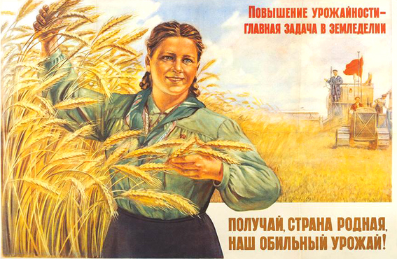 Зампред ЦК КПРФ Владимир Кашин: Хлеб всему голова