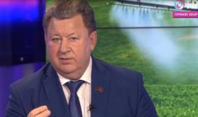 Владимир Кашин: За последние четверть века в нашей стране вырезали 37 млн голов крупного рогатого скота