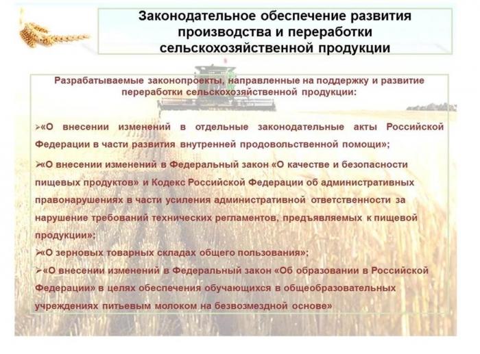 В.И.Кашин: Развитие пищевой и перерабатывающей промышленности – альтернатива сырьевому развитию АПК