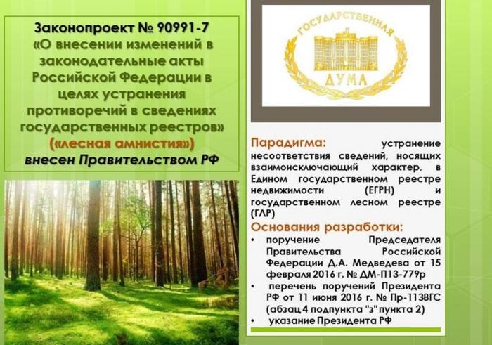 В.И. Кашин: Экологический беспредел в год экологии