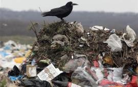 Современный капитализм, как никогда ранее, – это мусорная, губительная цивилизация