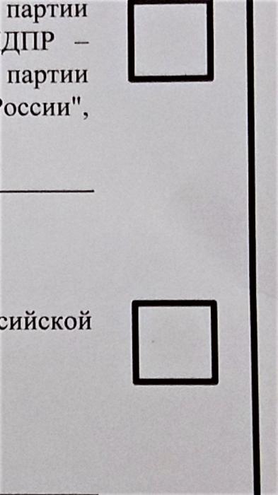 """В Ленинском районе избирателям """"подсказывают"""", как голосовать"""