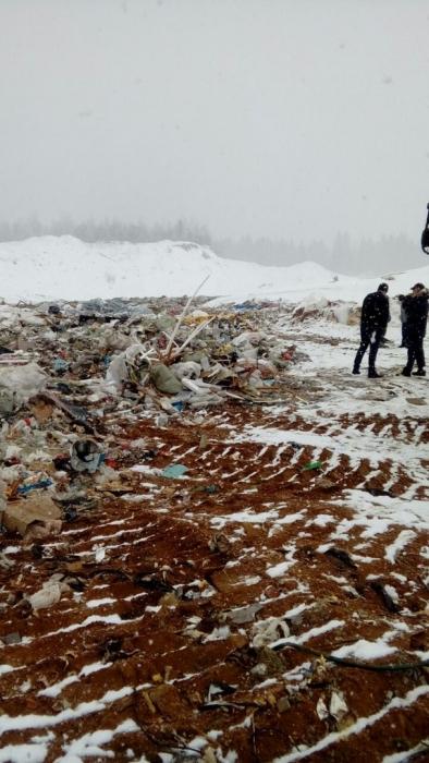 В Подмосковной Рузе в акции против свалки приняло участие более 600 человек