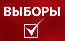 В Волоколамске лидирует Константин Черемисов