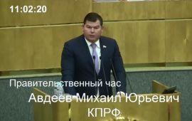 Михаил Авдеев  предупредил о сложностях перехода на проектное финансирование
