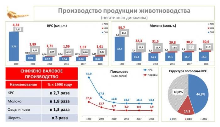 Владимир Кашин выступил на итоговом заседании Коллегии Министерства сельского хозяйства РФ