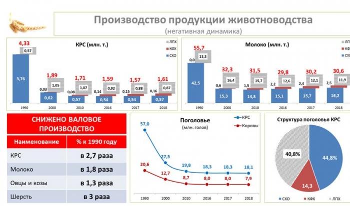 В.И. Кашин выступил на общем собрании членов Российской Академии наук отделения сельскохозяйственных наук