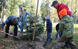 В Воскресенске прошла акция «Наш лес. Посади свое дерево»
