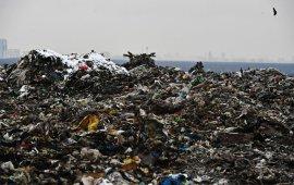 Жалобы жителей Подмосковья на мусорные свалки принял к рассмотрению Европейский суд по правам человека. Впервые!
