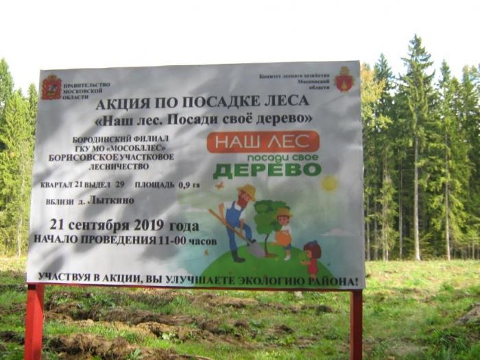 Акция «Создадим парки Победы по всей стране» в Можайске