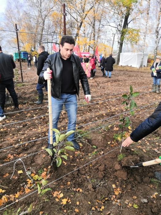 Клинские коммунисты приняли участие в акции «Сад Победы»