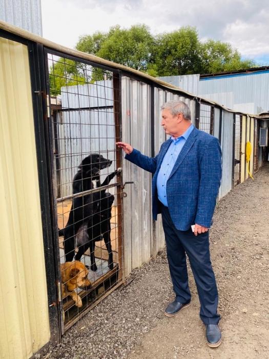 Зампредседателя Мособлдумы Константин Черемисов посетил Благотворительный Фонд помощи животным «ЗОО ДОМ» в Королёве