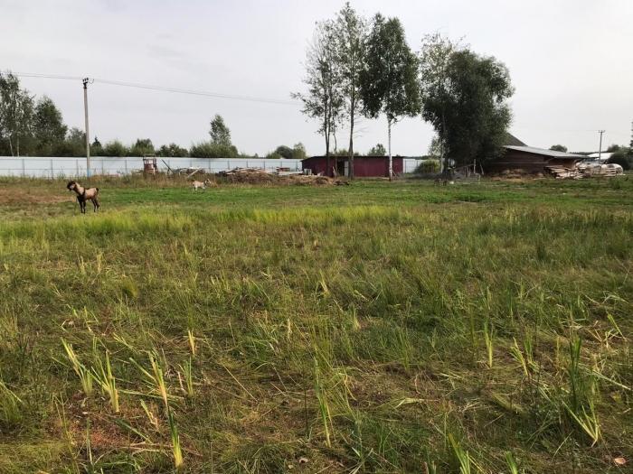 Беспредел по Орехово-Зуевски или как муниципальные чиновники уничтожают фермерство