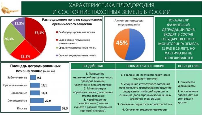 В.И. Кашин: «Основные направления комплексного развития сельских территорий России и научное обеспечение их реализации»