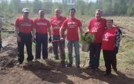 Коломенские коммунисты приняли участие в эколого-патриотической акции «Лес Победы»