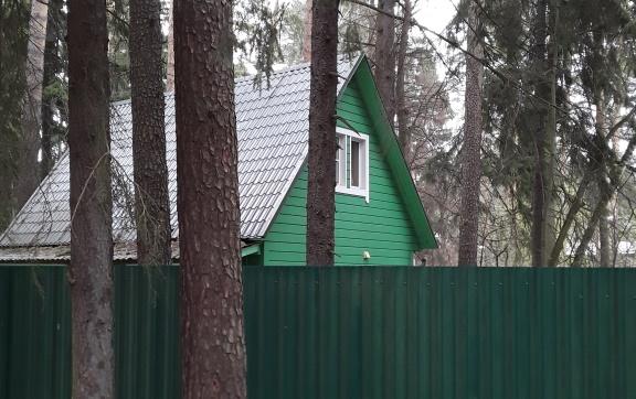 Лесной бал правит капитал
