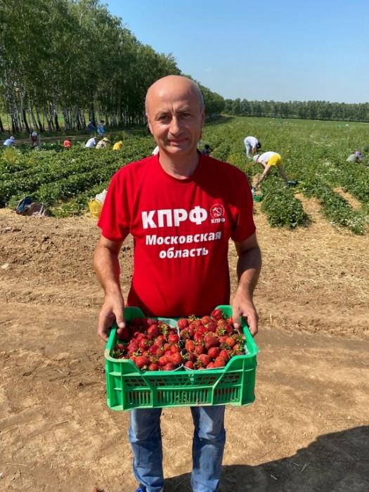 Красный десант подмосковных коммунистов помог собрать урожай земляники в совхозе им. Ленина