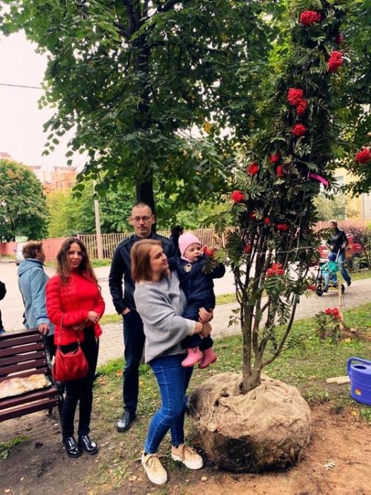 Кандидат коммунист Петрова Светлана приняла участие в посадке рябин в Рябиновом сквере в Королёве!!!