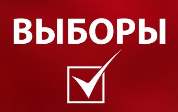 Выборы, как индикатор кретинизма